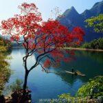 Природа и экология острова Хайнань. Китай.