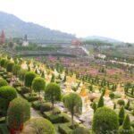Нонг-Нуч в Паттайе, (Тайланд) — Великолепный парковый комплекс