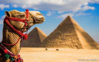 Перемещение по Египту.
