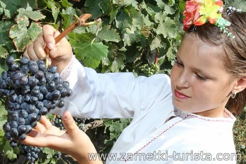 Болгария. Сельская жизнь в Болгарии.