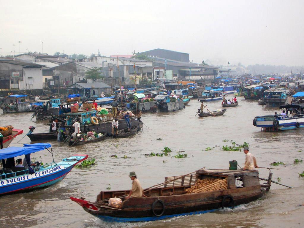 добыча морепродуктов, рыбы