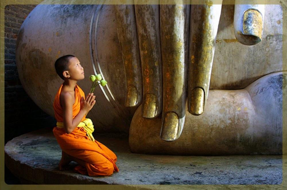 во сне поклонился я будда очередном обзоре