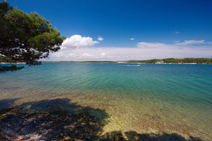 Хорватия, полуостров Истрия, Адриатическое море, пляж, сосны