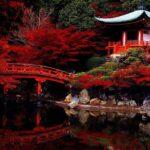 Туристу на заметку или что нужно узнать перед посещением Японии
