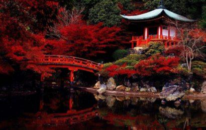 Япония, советы