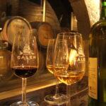 Португальские вина.