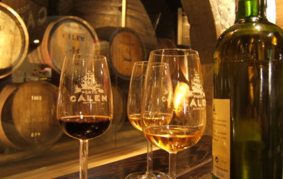 Португалия, вино, виноделие