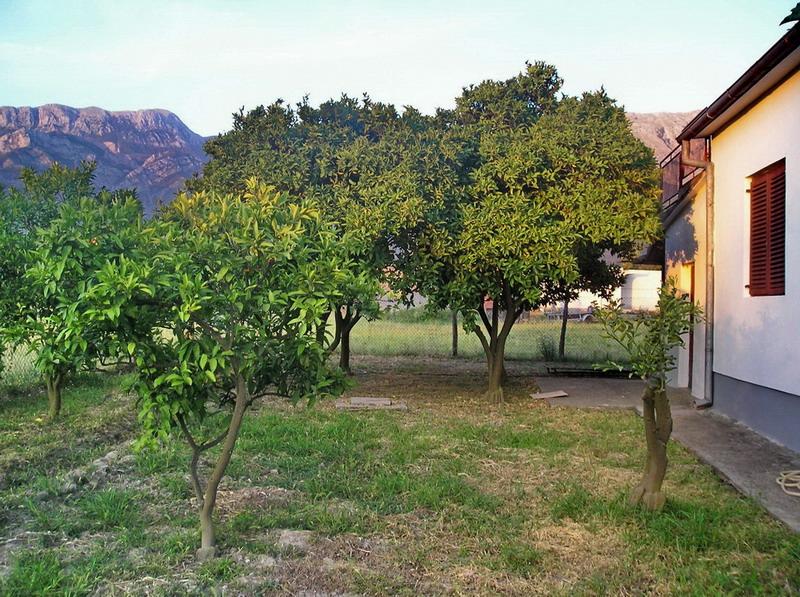Черногория, недвижимость, дом, дача, сад
