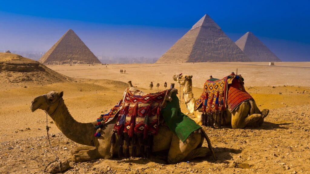 Январь 2017, отдых на море, бюджетная поездка, Египет
