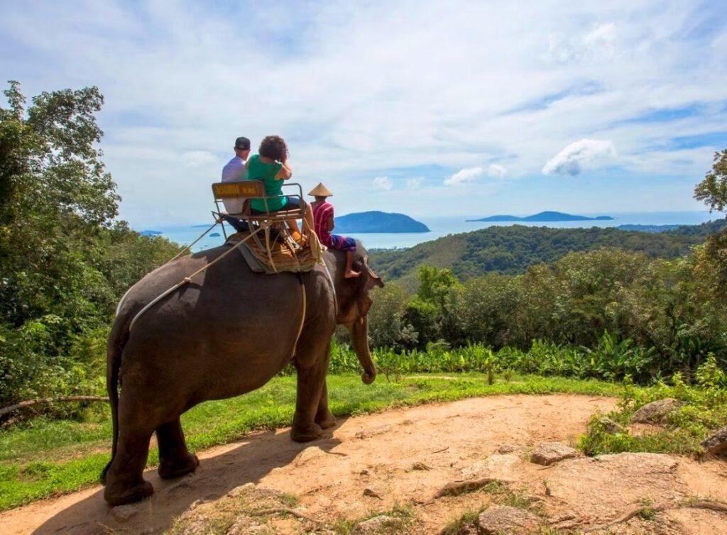 Siam Safari Nature Tours